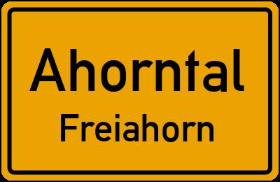 An der Wach in AhorntalFreiahorn