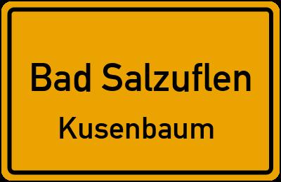 Am Anger in Bad SalzuflenKusenbaum