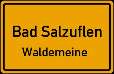 Ortsschild Bad Salzuflen Waldemeine