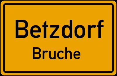 Klosterwiese in BetzdorfBruche