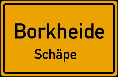 Akazienallee in BorkheideSchäpe