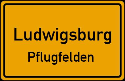 Ludwigsburg Pflugfelden