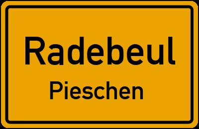 Ortsschild Radebeul Pieschen