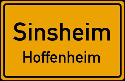 Hoffenheim Ort