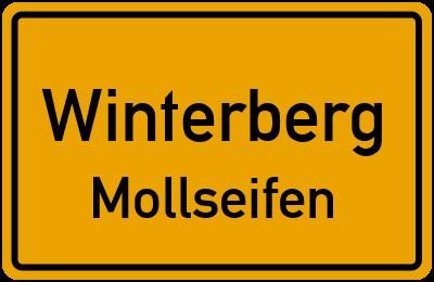 Straßenverzeichnis Winterberg Mollseifen