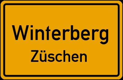 Straßenverzeichnis Winterberg Züschen